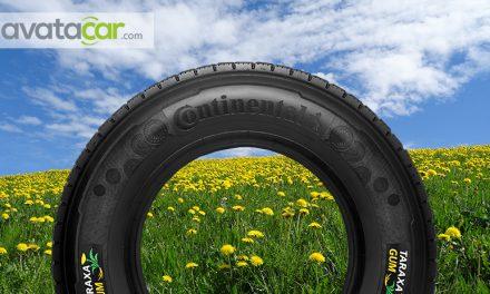 Continental va fabriquer des pneus à partir de pissenlit